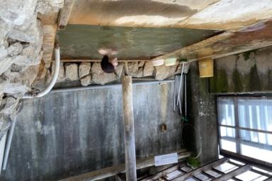 塩化物泉」のアーカイブ